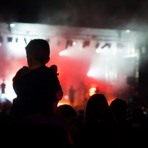 Concert samedi à Festicolor 2015 ® Pierre Derouette